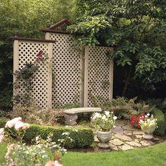 Backyard screen.