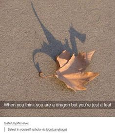 Beleaf in yourself lol