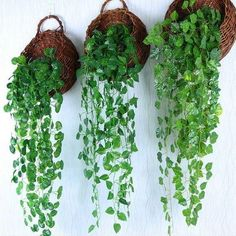 Artificial Ivy Leaves