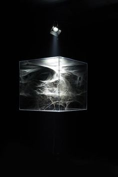 Artist Turns Spider Webs Into Haunting Sculptures | Co.Design | business + design