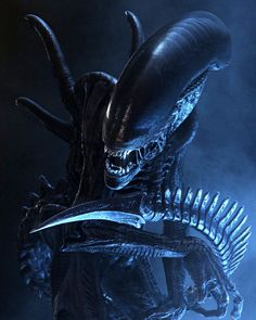 alien movie images | Next 'Alien' Movie to Be a Prequel