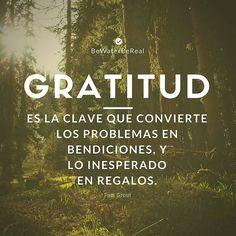 64 Mejores Imágenes De Agradecer Frases Positivas