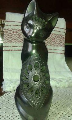 Gato barro negro Oaxaca