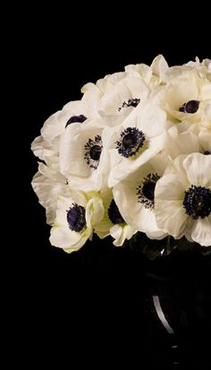 Crafts For Toddlers Children Tropical Flowers Arrangements Centre Pieces White Anemone, Anemone Flower, Tropical Flowers, Fresh Flowers, White Flowers, Floral Centerpieces, Floral Arrangements, Floral Bouquets, Beautiful Flowers