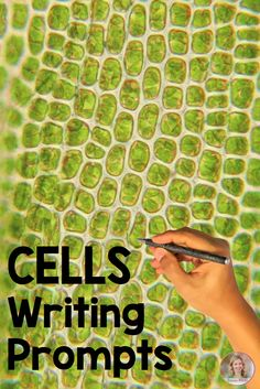 Cells writing prompts for secondary science from Science Rocks Science Cells, Science Biology, Teaching Biology, Science Lessons, Science Education, Life Science, Cell Biology, Ap Biology, Forensic Science