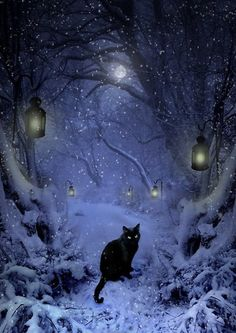 The cat will show the way...blue ice