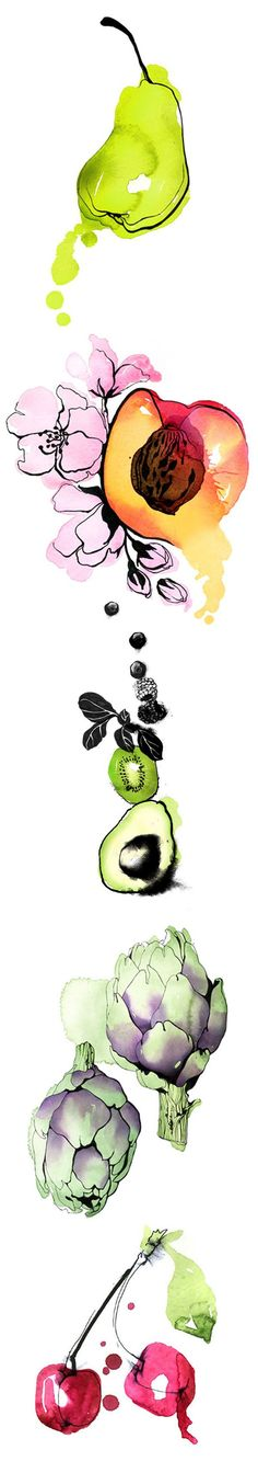 Christina Drejenstam - Illustration - Agent Molly & Co. I love this illustration because of all the fruits❤️ Fruit Illustration, Food Illustrations, Watercolor Illustration, Watercolor Fruit, Watercolor And Ink, Watercolor Paintings, Watercolor Pencils, Art Aquarelle, Chiaroscuro
