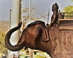 India, Horses, Animals, Goa India, Animales, Animaux, Horse, Animal, Animais