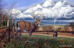 Artist Greg Bordignon Unframed Whitetail Deer Print When Tempers Flare | WildlifePrints.com