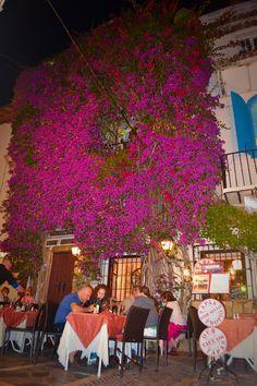 Restaurants in Marbella at night