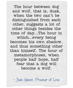 You and I . We are dusk. We are the dog and the wolf. Day walker to night. Shadow to light . We are the dusk