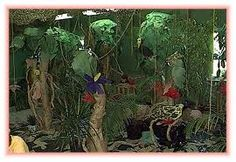 A Preschool Rain Forest Layers Theme that includes preschool lesson plans, activities and Interest Learning Center ideas for your Preschool Classroom! Rainforest Preschool, Rainforest Classroom, Preschool Jungle, Preschool Lesson Plans, Preschool Themes, Preschool Science, Brazil Rainforest, Rainforest Theme, Classroom Tree