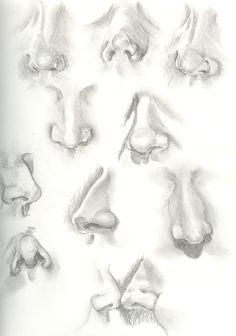 skull anatomy book - חיפוש ב-Google