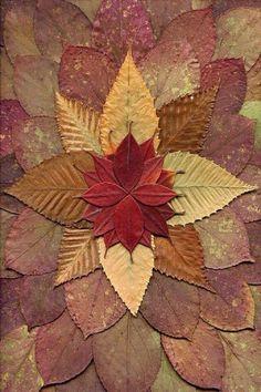 Fall for Autumn: Mandala created from Rhododendron, Betula, and Stewartia leaves. Art Et Nature, Nature Crafts, Fall Crafts, Mandala Art, Mandala Pattern, Mandala Design, Land Art, Art Floral, Autumn Art
