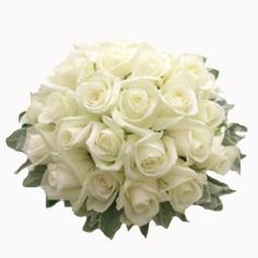 with some added butterflies looks like i may use this as my White wedding bouquet White Rose Bouquet, White Roses Wedding, Rose Bridal Bouquet, White Wedding Bouquets, Bride Bouquets, Bouquet Wedding, Wedding Dresses, Dream Wedding, Wedding Day