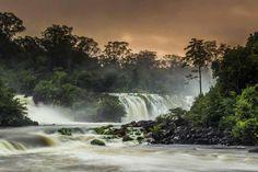 Parque Nacional das Montanhas do Tumucumaque- Amapá.
