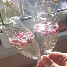 Most of us are guilty of automatically thinking that sparkling wine and champagne are the same beverage. Read on for the main differences! Sparkling Wine Vs Champagne, Sparkling Wine Brands, Champagne Brands, Champagne Region, Champagne Bottles, Pinot Blanc, Pinot Gris