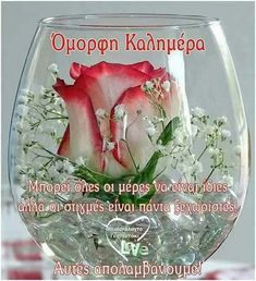 Happy Morning, Good Morning Good Night, Love You Gif, Beautiful Pink Roses, Morning Greetings Quotes, Wine Glass, Glass Vase, Greek Quotes, Coffee Art