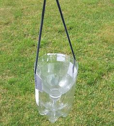 The Wild Domestic: An effective, homemade wasp/fly trap, for about 20 cents! Wasp Trap Diy, Wasp Traps, Bug Trap, Homemade Bee Trap, Homemade Fly Traps, Wasp Repellent, Fly Repellant, Wasp Catcher, How To Kill Bees