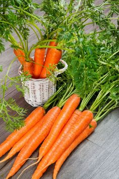 7 facts about carrots :)