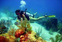 Isla San Andres En Colombia | Buceo en Colombia / Plongée sous-marine en Colombie