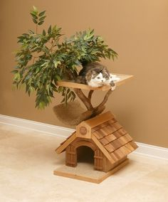 Okay Steph! Right after you've completed the bird houses! Cat Tree Houses!