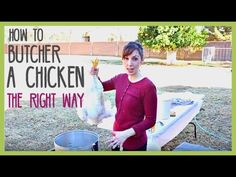 HOW TO BUTCHER & PROCESS A CHICKEN (the right way)