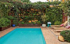A piscina ocupa quase todo o quintal desta casa, mas a moradora fazia questão de ter muitas plantas. Para não atrapalhar a circulação, o paisagista Silvio Sanchez optou pela ocupação vertical. Os muros foram tomados por trepadeiras
