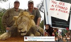 Cara Delevingne blasts Cecil the lion's killer Dr Walter Palmer | Daily Mail Online