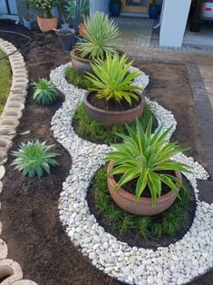 25 Beautiful Front Yard Rock Garden Landscaping Design Ideas ~ GODIYGO.COM Big Potted Plants, Outdoor Plants, Outdoor Gardens, Small Gardens, Modern Gardens, Backyard Plants, Backyard Privacy, Rock Garden Design, Small Garden Design