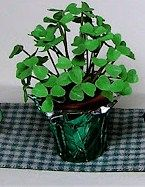 shamrock plant tutorial