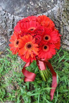 gerber daisy bouquets   Red Gerber Daisy Bouquet