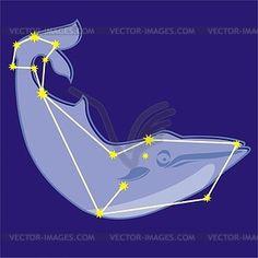 Constellation Cetus - vector clipart