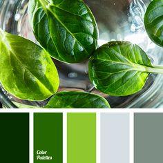 basil color, color matching, color of basil leaves, dark green color, gray color, green shades, grey-green color, lime color, olive color, pale-grey color, winter fog color, winter palette 2016.