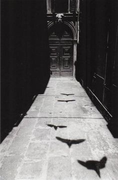 Ikko Narahara, from the series Where Time has Stopped, Venezia, 1964... both beautiful and eerie.