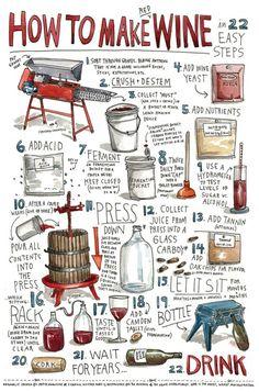 와인 제조 과정 22단계 - 수확부터 병입까지!
