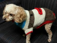 Sock monkey dog sweater I made for a friend http://www.ravelry.com/patterns/library/sock-monkey-dog-sweater