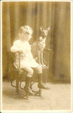 Girl on chair w cute PHARAOH HOUND dog RPPC real photo postcard