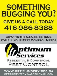 For all your Pest Control needs give us a call today Self Promotion, Promote Your Business, Pest Control, Toronto, City, Bed Bugs Treatment