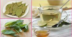 4 dias é o suficiente para eliminar gordura da barriga, das costas, coxas e braços. Leve 1 litro de água ao fogo, quando ferver, adicione 1 canela em pau, 3 folhas de louro e 1 colher (sopa) cheia de folhas de sálvia. Diminua o fogo, deixe ferver por + 5 minutos. Deixe descansar um pouco e adicione o suco de 1 limão puro. Coe e beba. Tome 1 copo em jejum, os outros ao longo do dia. Faça por 4 dias. Repita o tratamento a cada 2 ou 3 semanas. Evite o consumir alimentos açucarados e gordurosos.