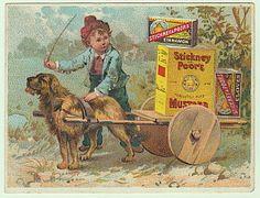 Stickney Poors Mustard Victorian Trade Card Dog Cart