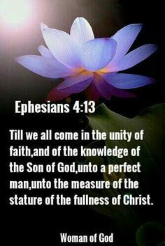 Till we all come in the unity of faith, & of the knowledge of the Son of God, unto a perfect man, unto the measure of the stature of the fullness of Christ. Bible Verse Art, Scripture Quotes, Bible Scriptures, Christ In Me, Bride Of Christ, Jesus Christ, Wise Quotes, Inspirational Quotes, Wise Sayings