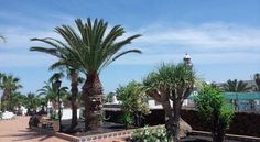 Apartamentos Vista Playa - #Apartments - EUR 63 - #Hotels #Spanien #PuertoDelCarmen http://www.justigo.de/hotels/spain/puerto-del-carmen/apartamentos-vista-playa_15244.html