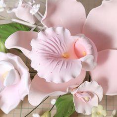 Large Cymbidium Orchid Sprays - Pink    ART