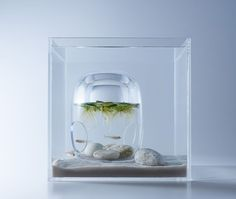 """All images via Haruka Misawa.  Designer and founder of Misawa Design Institute, Haruka Misawa (previously), has designed a series of minimal aquariums titled """"Waterscapes"""" that include 3D printed obje"""
