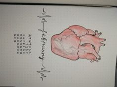Bullet journal monthly february, drawed anatomical heart