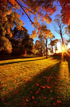 autumn scenes First Day Of Fall art print by Phil Koch.Our art prints are produced on acid-free papers using archival inks to guarantee that they last a lifetime without fading or loss o Autumn Nature, Autumn Art, Autumn Photography, Landscape Photography, Autumn Scenes, Autumn Aesthetic, Autumn Cozy, Fall Wallpaper, Fall Pictures