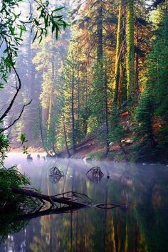 Huntington Lake is an Other Sporting Facility in Lakeshore. Plan your road trip to Huntington Lake in CA with Roadtrippers.
