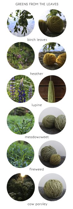 The spring is on it's way and I know that it's much further away in other parts of the world that are more south. Spring and the early summer are ideal time for natural dyeing. When you…
