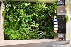 Amazing Motivated Vertical Gardens Going Green : Amazing Motivated Vertical Gardens Going Green